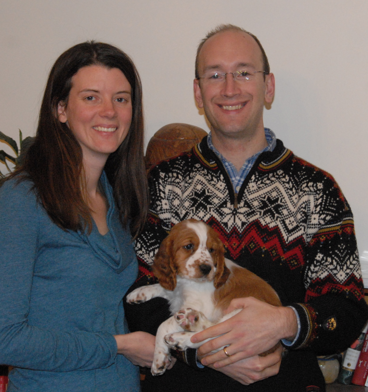 Scout Welsh springer puppy
